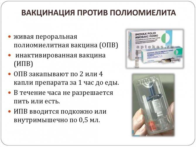Туляремия прививка: подготовка, порядок и график проведения