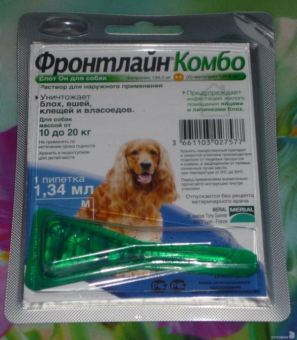 Как защитить собаку от клещей народными средствами – эффективные рецепты с инструкцией по применению