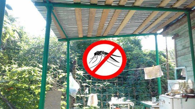 Как победить комаров на садовом участке?