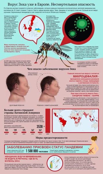 Можно ли заразиться вич (спидом) через укус комара?