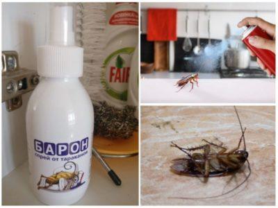 Чем морить тараканов в квартире самостоятельно