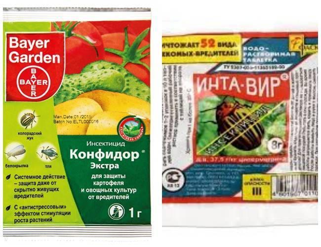 Химическая защита растений от вредителей и болезней - vsadu.ru