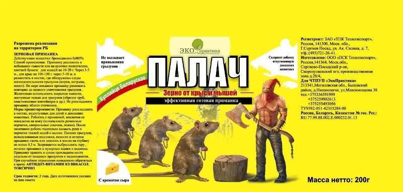 Крысиный яд – особенности применения, действия при отравлении