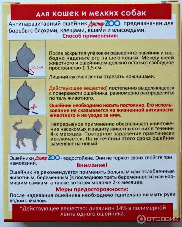 Особенности ошейников против блох для кошек и собак