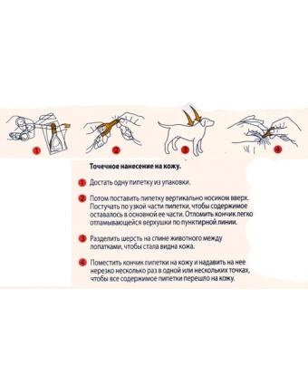Прививки от клещей для собак и кошек, после укуса и в качестве профилактики пироплазмоза: нужно ли прививать, сравнение вакцин, отзывы