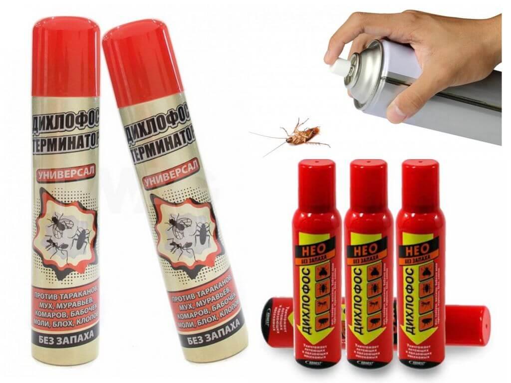 Дихлофос — эффективное средство от тараканов и других насекомых