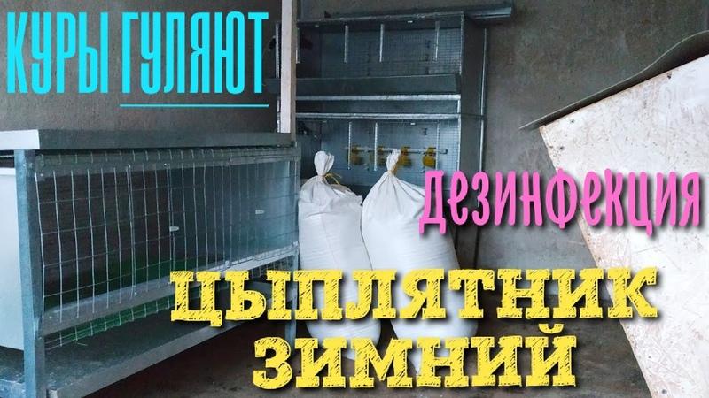 Дезинфекция курятника в домашних условиях
