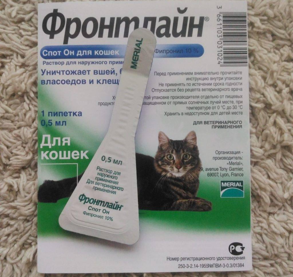 Средства от клещей для кошек: капли, мази, таблетки и спреи