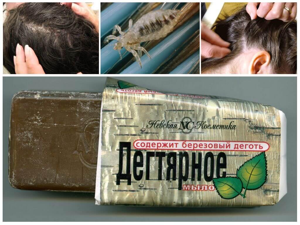 Дегтярное мыло от вшей и гнид - невероятный эффект