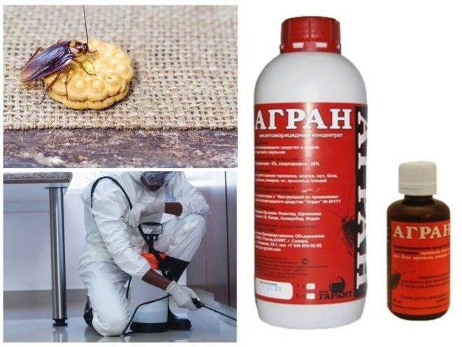 Средство от иксодовых клещей: как защититься от насекомых