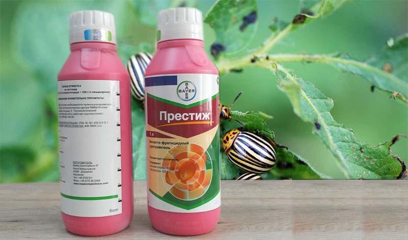 Средство от колорадского жука престиж: инструкция и вред для человека