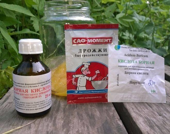 Борная кислота от муравьев в квартире и в огороде: рецепт для приготовления вдомашних условиях, отзывы, рекомендации
