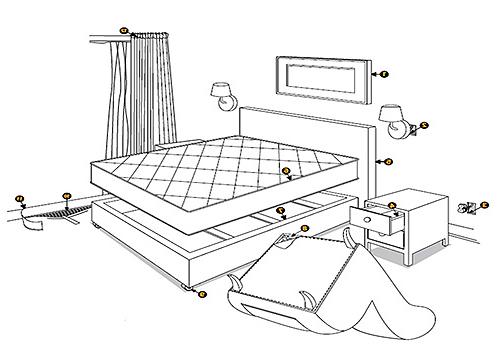 Клопы в квартире: как избавиться навсегда самостоятельно, причины появления