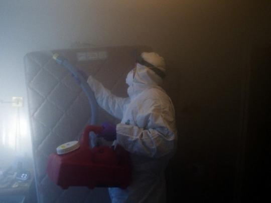 Обработка горячим туманом от клопов: технология, эффективность,  процесс