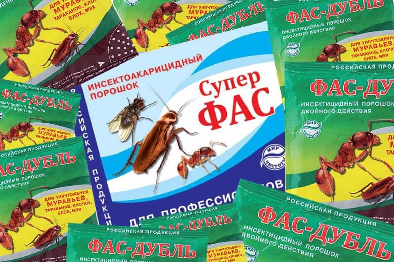 Дуст от тараканов - какой порошок лучше и как использовать