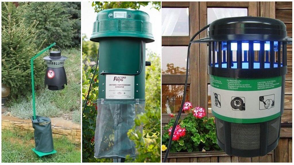 Уничтожение комаров на дачном участке: растения репелленты, самодельные ловушки и ультразвуковые отпугиватели