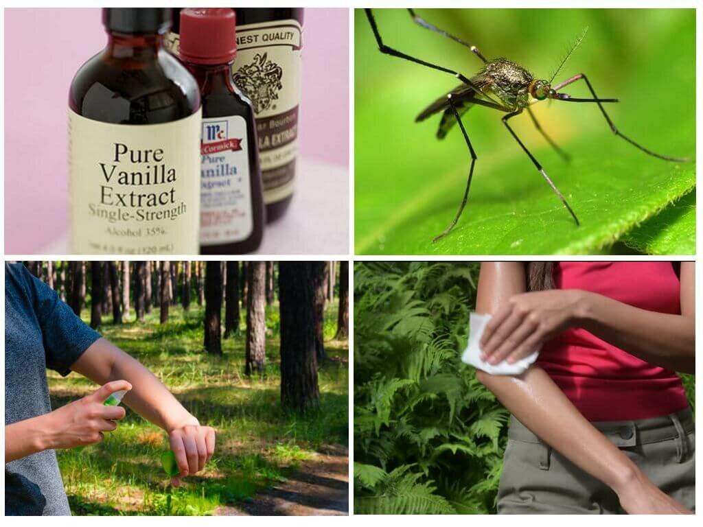 Народные средства от укусов комаров и мошек, лечение зуда