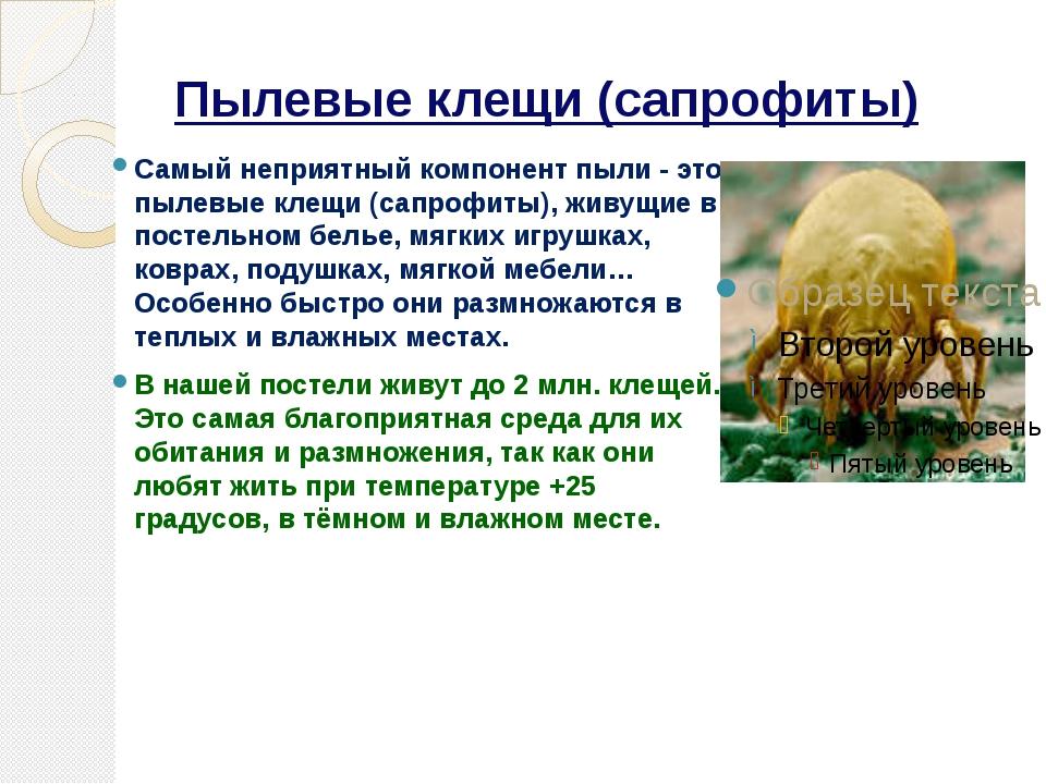 Пылевые клещи - медицинский портал eurolab