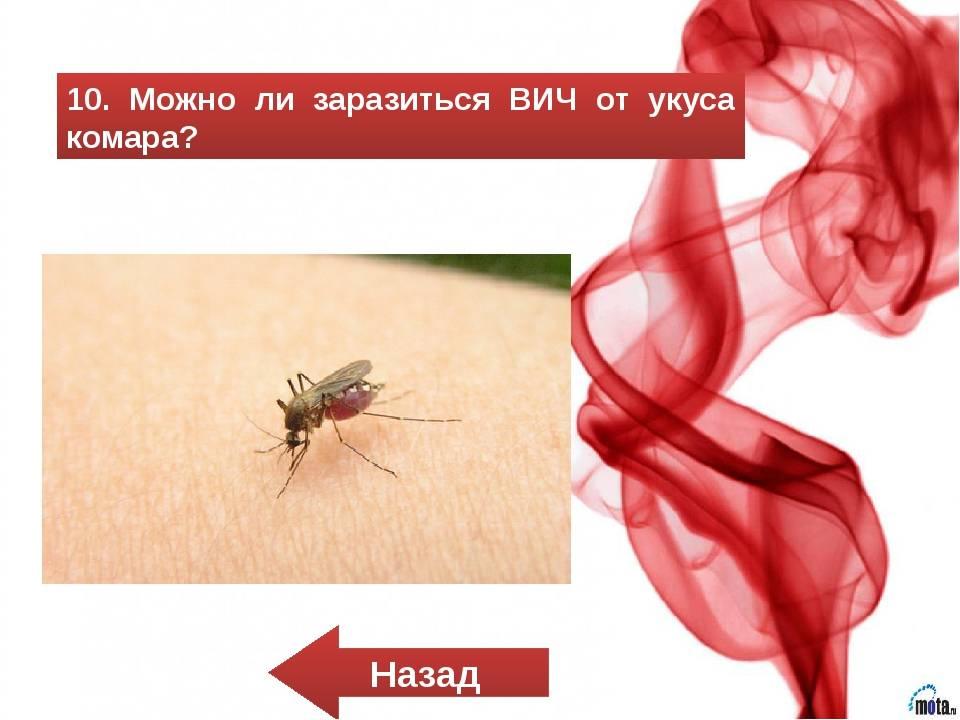 Можно ли заразиться гепатитом от комара – всё о болезнях печени