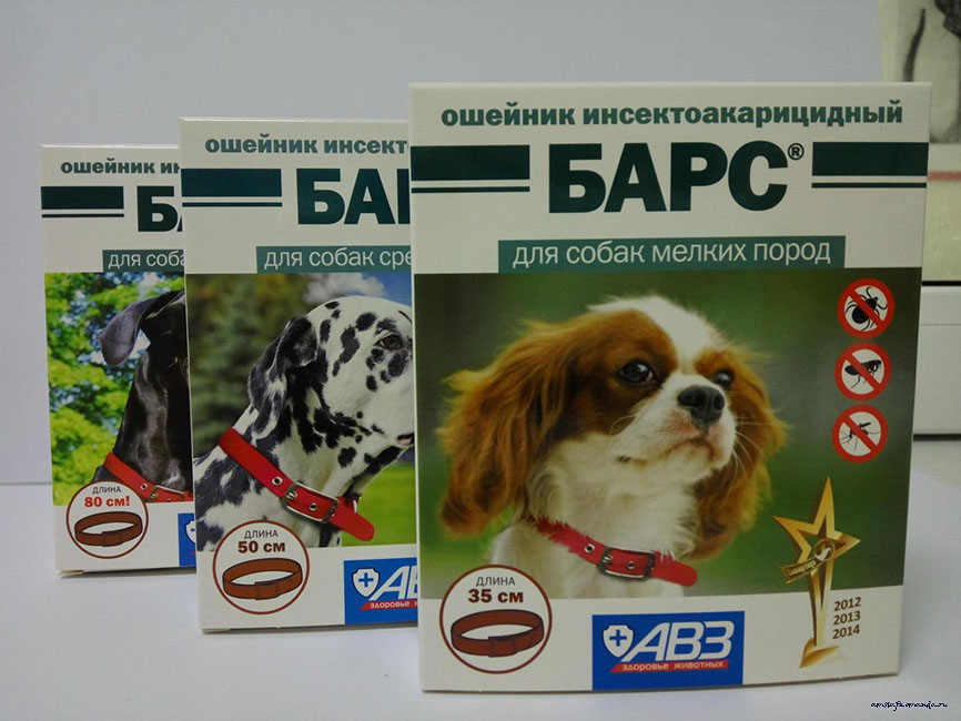 Ошейник барс для кошек и собак – отзывы и инструкция по применению