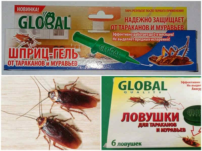 9 средств чтобы вывести тараканов. Что лучше: сделать в домашних условиях, или использовать покупные?