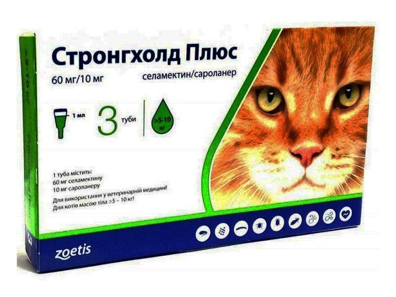 Средства от блох для кошек и котят: обзор наиболее эффективных препаратов