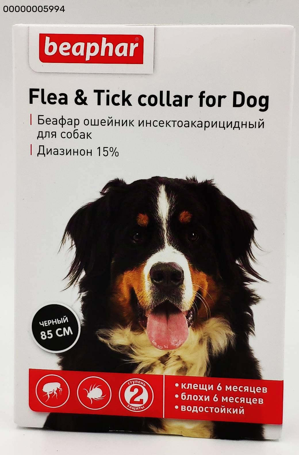 Выбираем лучший ошейник для собаки от клещей и блох, а также правила пользования ошейником