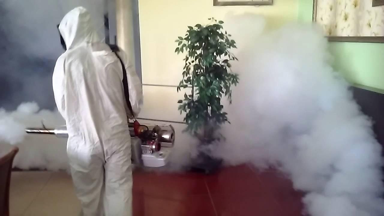 Холодный туман от клопов: отзывы, инструкция по применению и эффективность