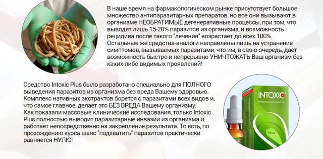 Чистка кишечника от паразитов в домашних условиях народными средствами и методами или лекарствами