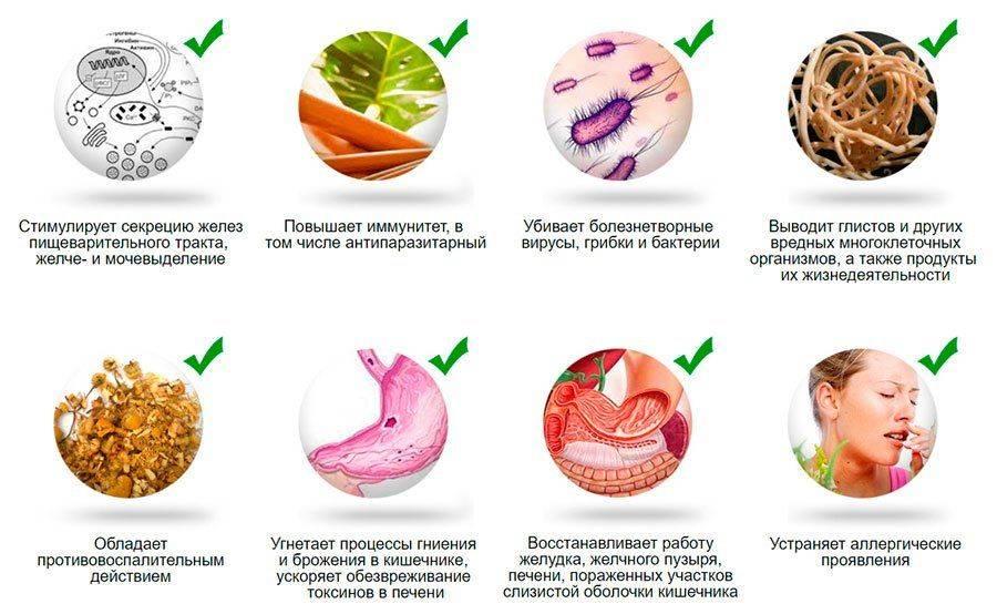 Народные средства от паразитов в организме человека (онлайн сервис)