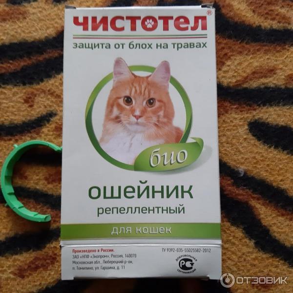 """Капли от блох для кошек """"чистотел"""": инструкция по применению для котят и взрослых животных"""