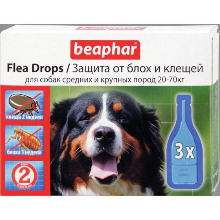 Капли от клещей для собак: какие лучше