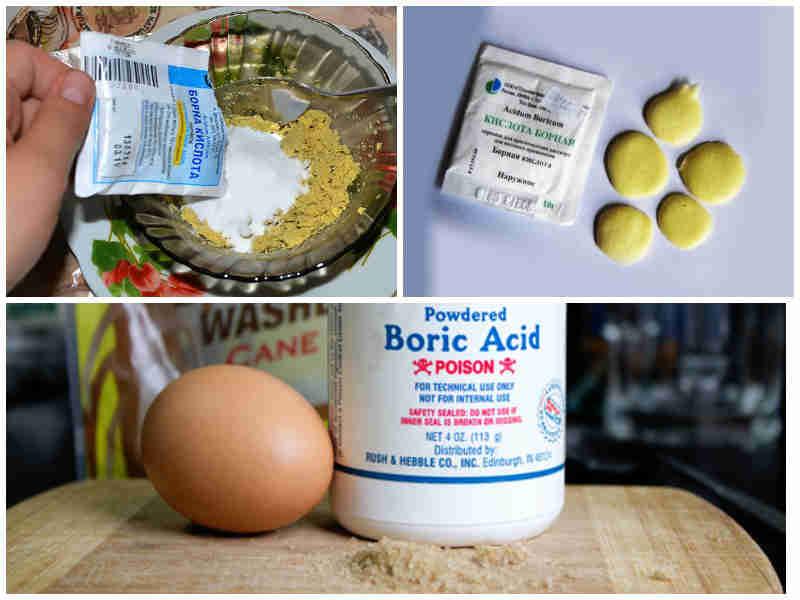 Борная кислота от тараканов рецепт с яйцом советы бабушек