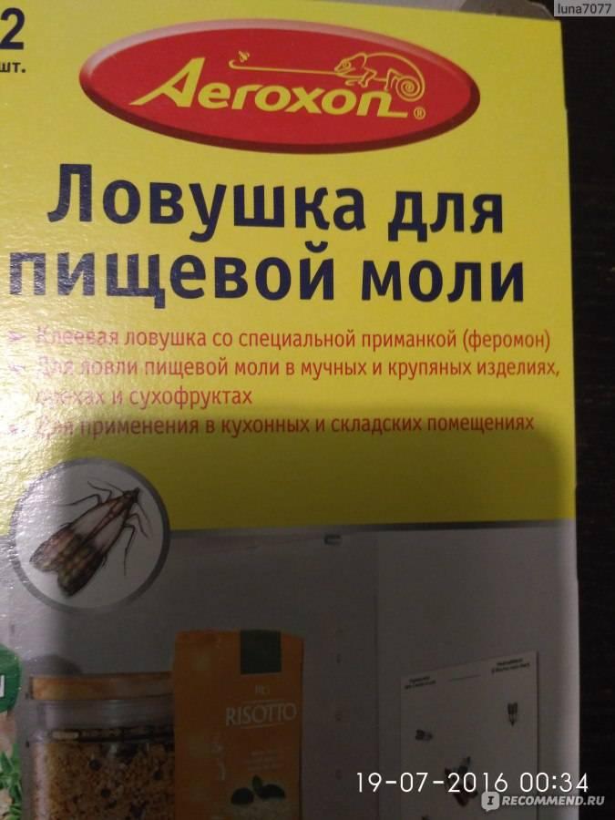 Хозяйке на заметку: как избавиться от пищевой моли