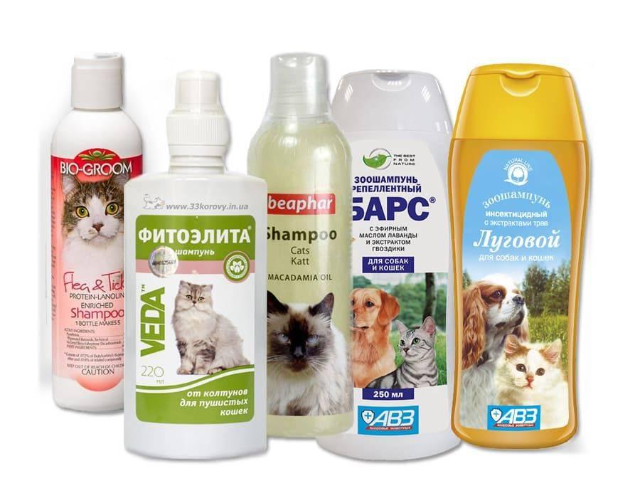 Средства от блох для кошек и котят:  виды и названия с фото