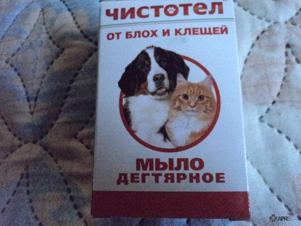 Дегтярное и дустовое мыло от блох у кошек и собак: отзывы о применении