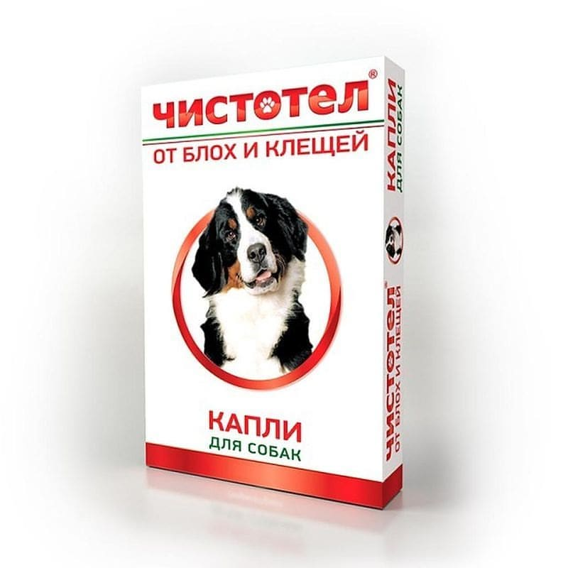 Обзор эффективных капель на холку для собак от блох и клещей