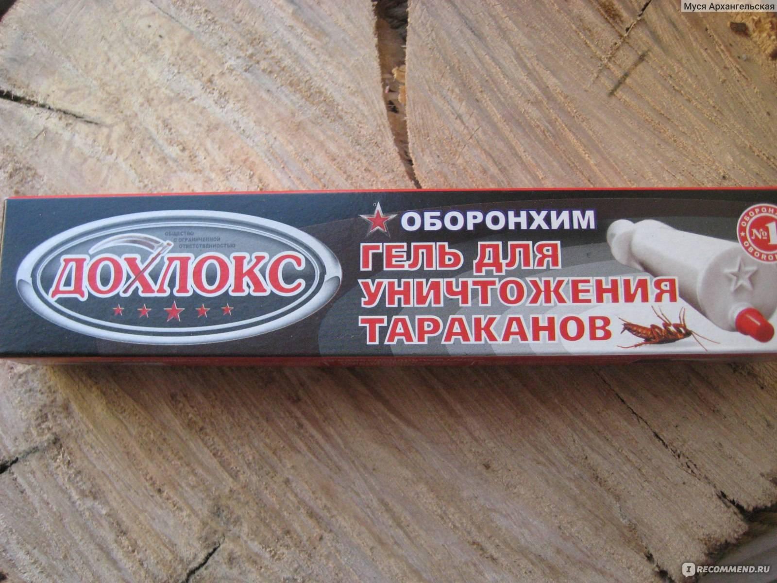 Гель дохлокс от тараканов: инструкция по применению, цена, отзывы