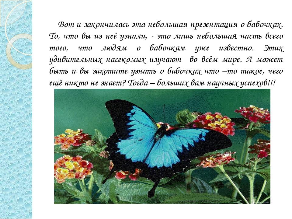 Что такое бабочка на зуб