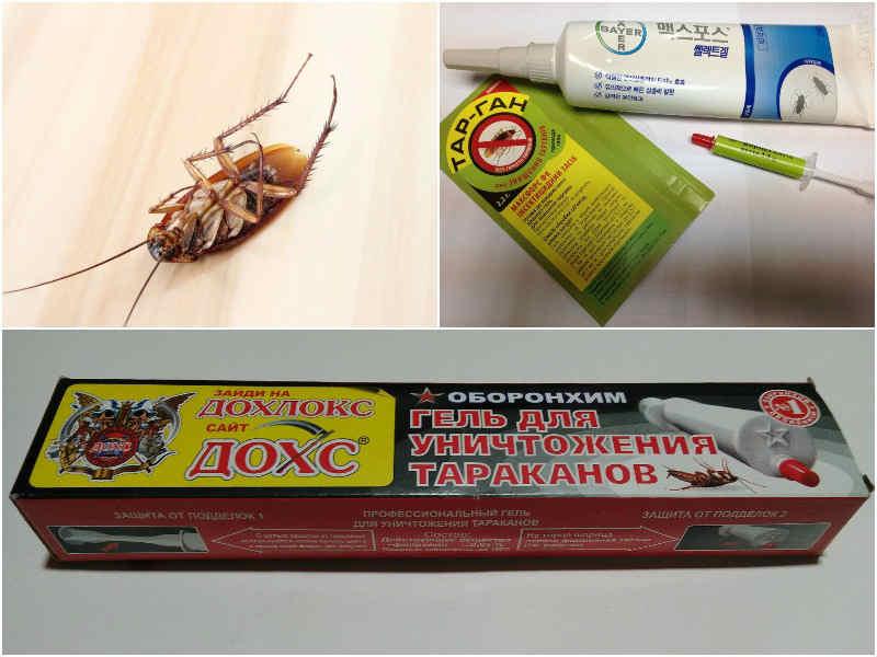Гель-шприцы от тараканов: обзор, инструкция и отзывы