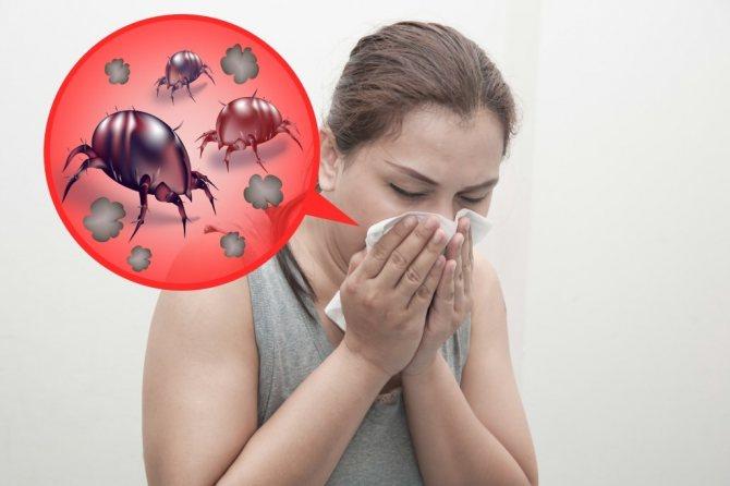 14 способов избавиться от пылевых клещей без химикатов