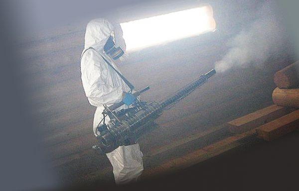 Как уничтожать тараканов горячим или холодным туманом