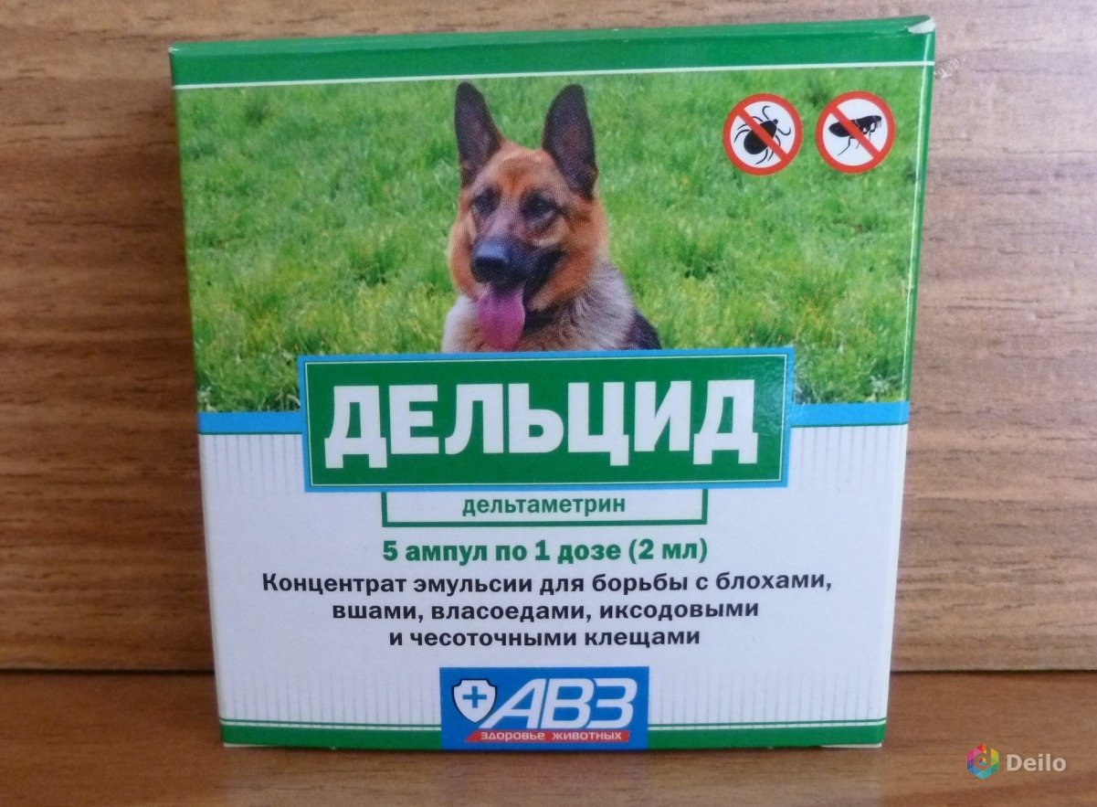 Дельцид для кошек и собак: показания и инструкция по применению, отзывы, цена