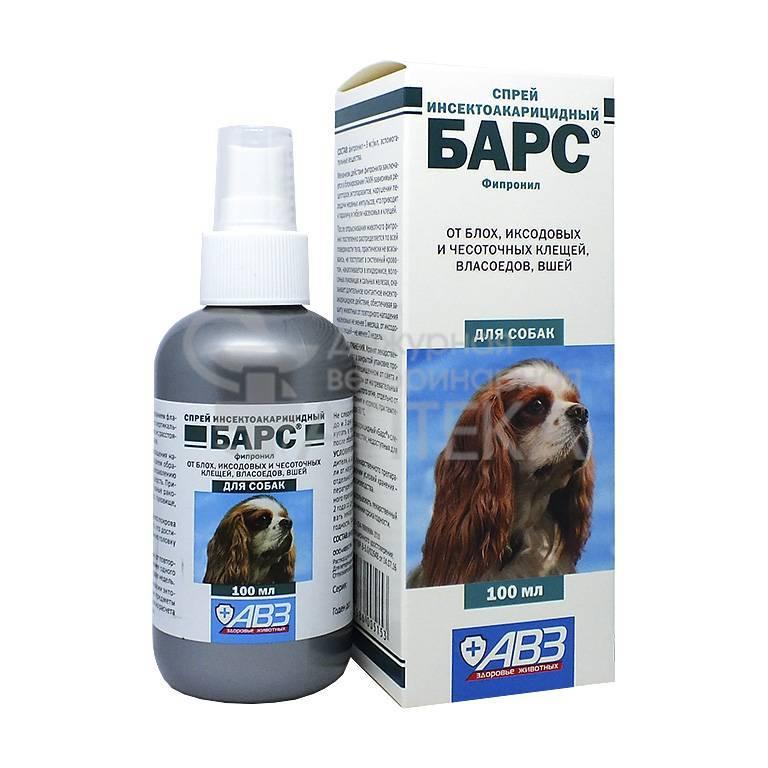 ❶ топ-5 лучших способов чем защитить (обработать) собаку от клещей - отзывы ветеринаров