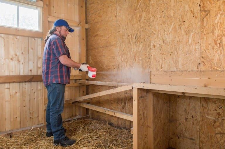 Как и чем обработать курятник от инфекции — правила дезинфекция