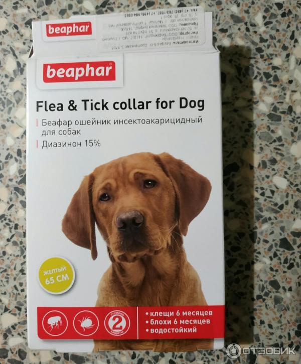 Ошейники от блох и клещей для собак: преимущества и недостатки, средние цены, а также лучшие предмтавители русский фермер