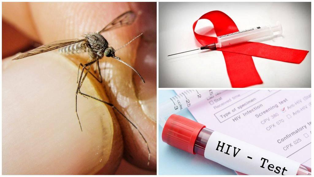 Переносят ли комары вич или гепатит