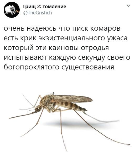 В новой зеландии нет комаров, как возникло данное утверждение - информационный портал командир