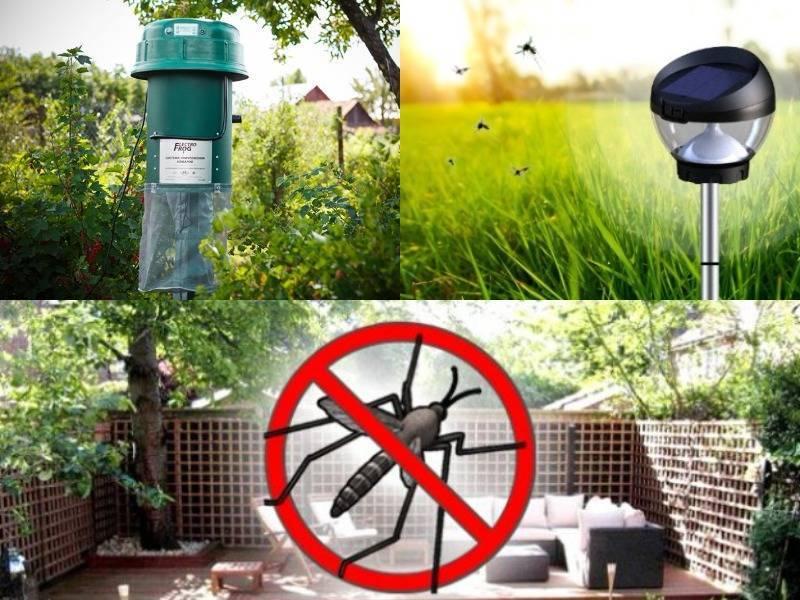 Помогают ли народные средства от комаров?