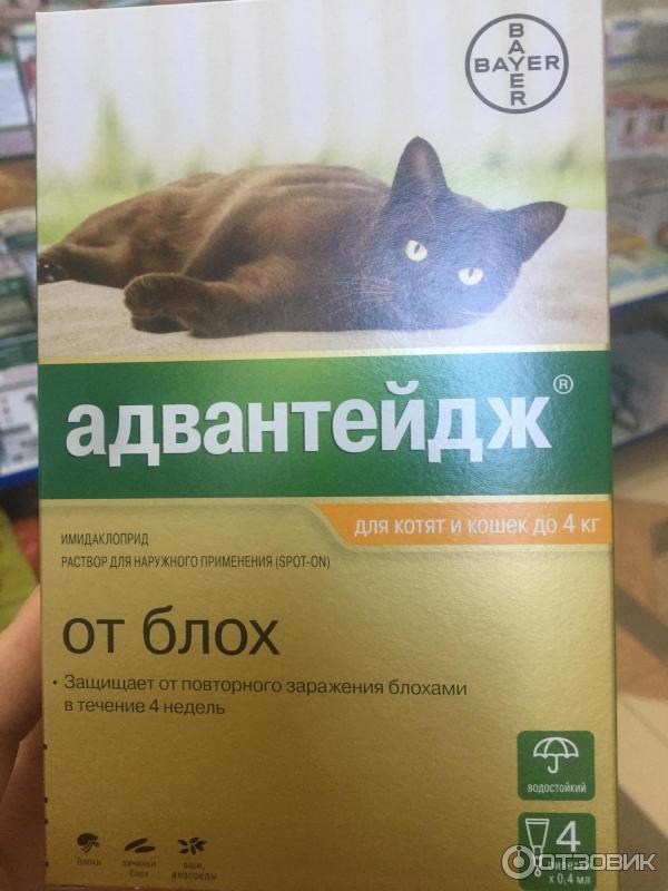Капли адвантейдж от блох для домашних животных